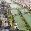 View of Paris from the Eiffel Tower — Stock Photo #41666971