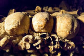 Skulls in the Catacombs of Paris — Stock Photo