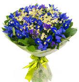 Bouquet of blue irises and daisies — Stock Photo
