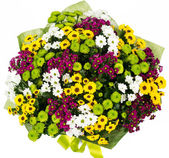 Bouquet of asters and daisies — Stock Photo