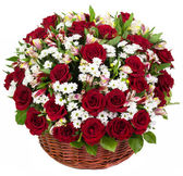 Natural red roses in a basket — Stock Photo
