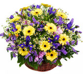 Natural gerberas and irises in a basket — Stock Photo