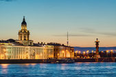 Night view of the Neva embankment in St. Petersburg — Stock Photo