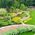natural de paisajismo en casa jardín — Foto de Stock