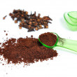 Cloves and ground cloves - Stock Photo