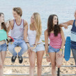 Group of diverse teens at beach — Stock Photo #40854119