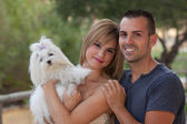 Family pet maltese dog — Stockfoto