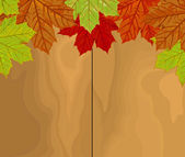 Autumn leaves vector over wood — Stock Vector