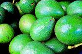 O abacate — Fotografia Stock