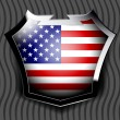 Stock vektor: Flag of USA