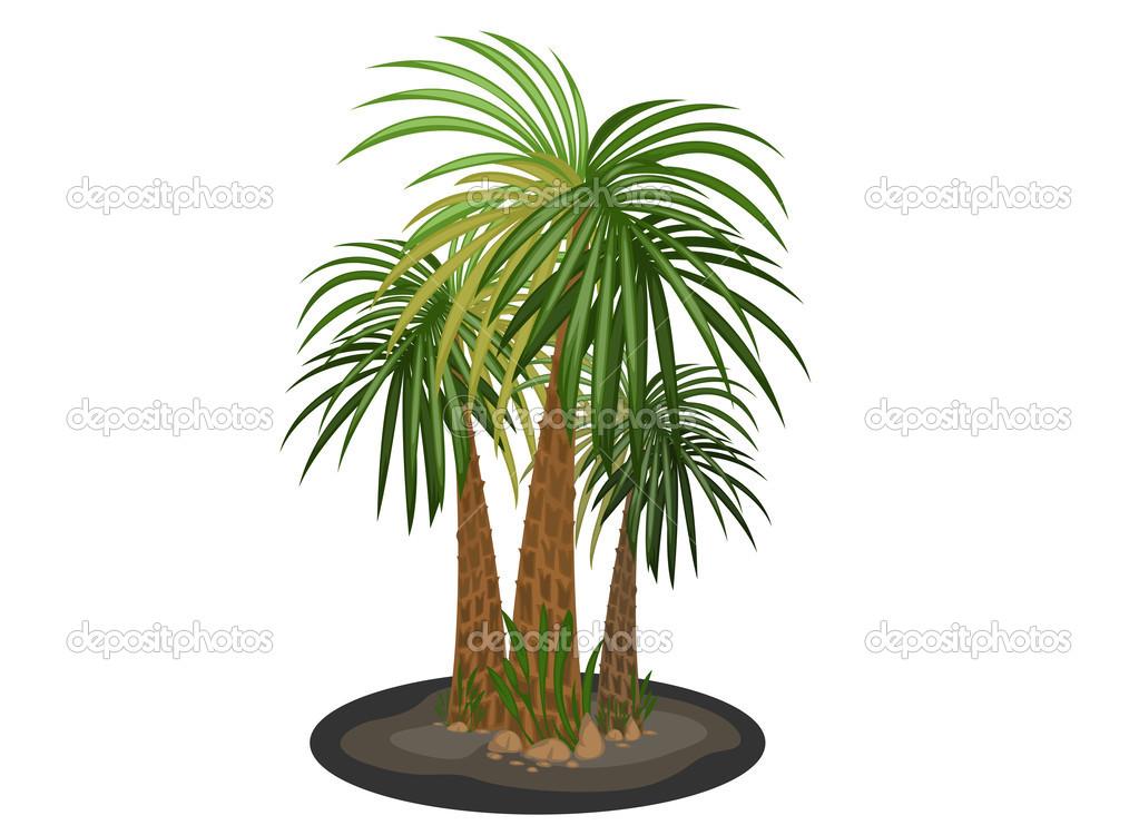 Palm Trees Cartoon Images Palm Trees Cartoon Vector on a