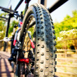 Mountain bike — Stock Photo #41741603