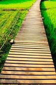 Puente de madera — Foto de Stock