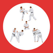 Set of images of karate — Stock Vector