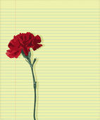 Carnation on paper — Stock Vector