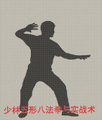 Silhouette of the man of engaged Kung fu on a gray background — Stok Vektör