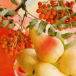 Stock Photo: Still-life with pears and a branch of a mountain ash on a table