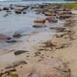 Stones on coast of Baltic sea — Stock Photo