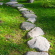 A track from the rubble in the garden in Japanese style — Stock Photo #13250082