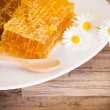 Honeycomb with daisies on white plate - Stock Photo