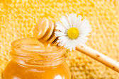 Jar of honey on the background of honeycombs — Stockfoto