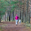 Stock Photo: The woman with a dog run in a forest park