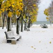 Alley in Park later in autumn. Snow storm — Stock Photo #14127933