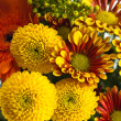 A bouquet of summer flowers, close-up  — Stock Photo