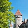 Towers of a fortification of Old Tallinn — Stock Photo