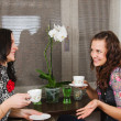 Young beautiful women drink tea and chat homes  — Stockfoto