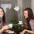 Two young beautiful women drink tea and chat homes  — Stock Photo