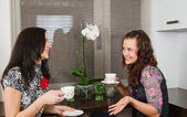 Young beautiful women drink tea and chat homes — Stock Photo