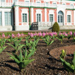 Gardens of Kadriorg Palace  in Tallinn, Estonia — Foto Stock
