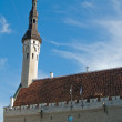 The Tallinn Town hall a sunny day — Stock Photo