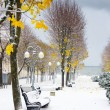 Alley in the Park later in the autumn. Snow storm — Stock Photo