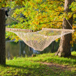 A hammock near the pond in autumn Park — Stockfoto