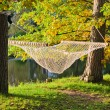 Foto Stock: A hammock near the pond in autumn Park