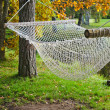 Foto de Stock  : A hammock near the pond in autumn Park