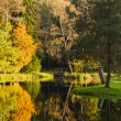 Autumn park with a pond — Stock Photo