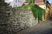 Narrow street in the old town of Tallinn — Stock Photo