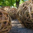Twisted willow twigs of balls for landscaping — Stock Photo