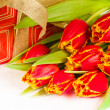 Red tulip with petals fringed by yellow and gift box, it is isol — Stock Photo