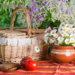 Summer   still life with flowers and food — Stock Photo