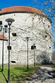 Tower Thick Margarita, Tallinn — Stock Photo