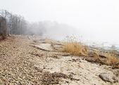 Coast of Baltic sea in a fog — Stock Photo
