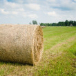 Stock Photo: Round hay bales on meadow