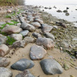 Stony coast of Baltic sea early in the morning — Stock Photo