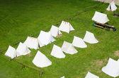 在绿色的草坪上营 — 图库照片