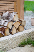 A pile of Birch wood in the garden, close-up — Stock Photo