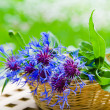 Bunch of cornflowers in a wicker basket. Summer background — Stock Photo